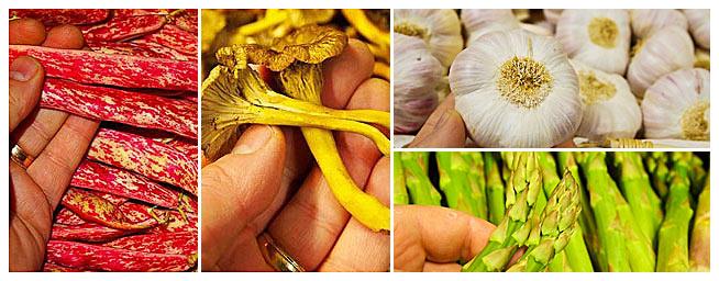 Lotus Frukt och Grönt